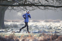 © Licensed to London News Pictures. 28/12/2017. London, UK. Heavy frost coats the grass in Richmond Park at sunrise. Tonight is predicted to be the coldest night of the year with temperatures as low as minus 15 °C in some parts of the UK. Photo credit: Peter Macdiarmid/LNP