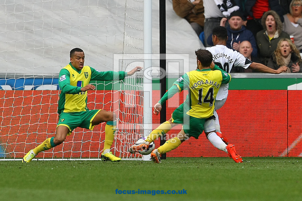 The ball breaks loose but Wes Hoolahan of Norwich clears ahead of Jonathan De Guzman of Swansea during the Barclays Premier League match at the Liberty Stadium, Swansea<br /> Picture by Paul Chesterton/Focus Images Ltd +44 7904 640267<br /> 29/03/2014