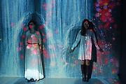 LILIA WINTER;ALEXANDRA ARTAMONOVSRJA, Team Lab, Transcending Bourndaries, Pace Gallery, Burlington Gardens. London. 24 January 2017