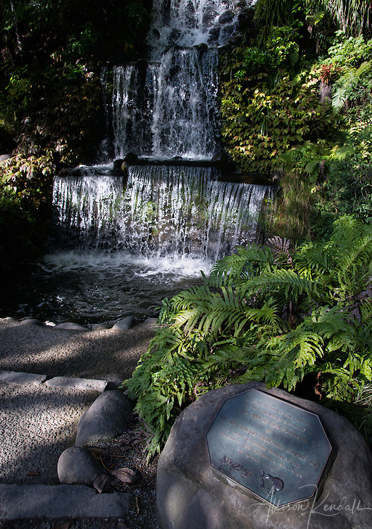 Scenes from the lush green pathways of Pukekura Park in New Plymouth, New Zealand