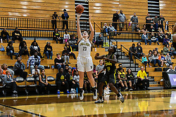 during Girls Basketball NHS vs FW Snider, on 11, 04, 2017