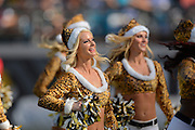 Jacksonville Jaguars cheerleaders perform during Jaguars 20-16 loss to Tennessee Titans at EverBank Field on Dec. 22, 2013  in Jacksonville, Florida.        ©2013 Scott A. Miller
