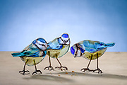 Handmade glass birds, Blue Tits by artist Emma Butler-Cole Aiken,  who is based in the Scottish Borders. <br /> <br /> Emma is an architectural glass artist creating contemporary work using traditional materials. She has created around 75 commissioned works throught the UK.<br /> <br /> Emma is captivated by the colours, textures and exuberant beauty of glass. Seeking magical combinations of image and material, she strives to reach beyond the ordinary to create unique works which stand the test of time. Discerning when to allow a particular colour to shine out unhindered and when to bring control and distinction is a continuous process, the choices of possible outcomes almost overwhelming. In this creative process her faith and light emerge.
