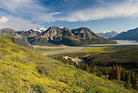 View up the Slims River Valley, Kluane National Park Yukon Canada