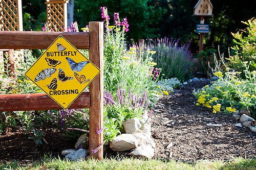 Incroyable Los Angeles, California: The Butterfly Garden Was Made At The Sepulveda  Garden Center By