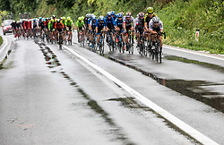 Peloton near Trebnje during 5th Stage of 26th Tour of Slovenia 2019 cycling race between Trebnje and Novo mesto (167,5 km), on June 23, 2019 in Slovenia. Photo by Vid Ponikvar / Sportida