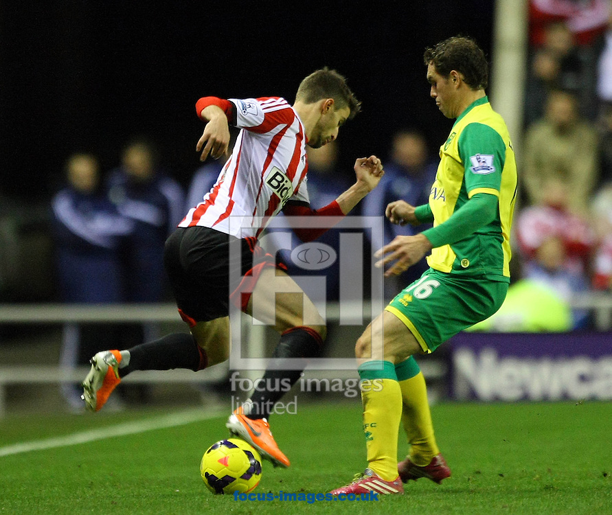 Picture by Paul Chesterton/Focus Images Ltd +44 7904 640267<br /> 21/12/2013<br /> Sunderland's Fabio Borini and Johan Elmander of Norwich in action during the Barclays Premier League match at the Stadium Of Light, Sunderland.