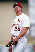 St. Louis Cardinal Baseball Mark McGwire