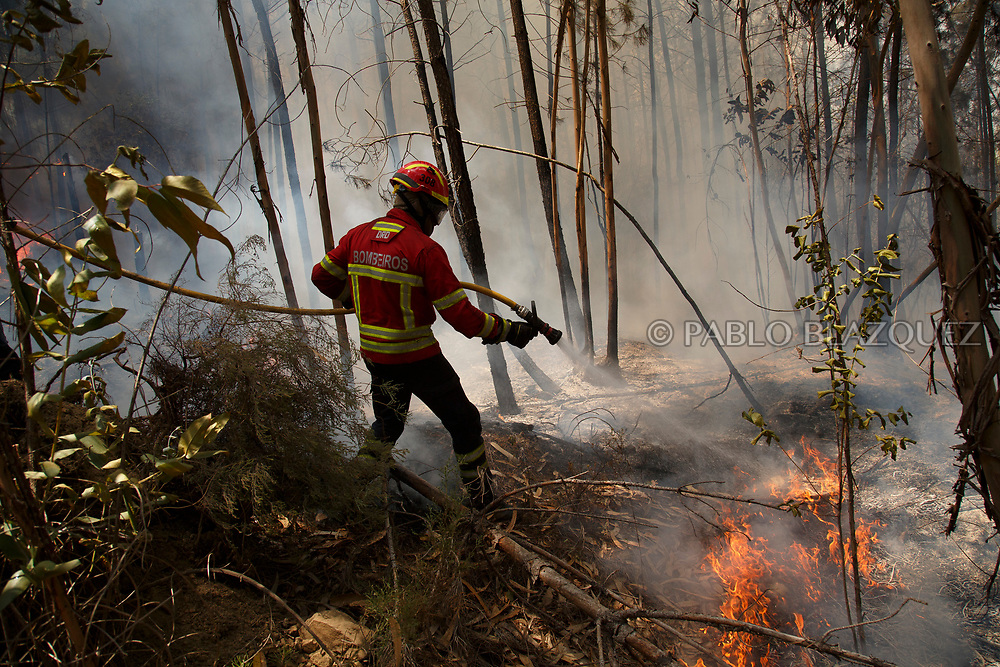 LEIRIA, PORTUGAL - JUNE 20:  A firefighter battles a fire after a wildfire took dozens of lives on June 20, 2017 near Picha, in Leiria district, Portugal. On Saturday night, a forest fire became uncontrollable in the Leiria district, killing at least 62 people and leaving many injured. Some of the victims died inside their cars as they tried to flee the area.  (Photo by Pablo Blazquez Dominguez/Getty Images)