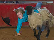 Arkansas Democrat-Gazette/BENJAMIN KRAIN --11/22/2014--<br />