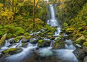 Lower Kentucky Falls; Kentucky Falls Trail, Siuslaw National Forest, Coast Range Mountains, Oregon.