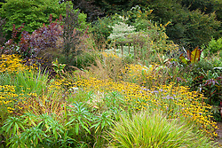 Autumn in the brick garden at Glebe Cottage with Rudbeckia fulgida var. deamii AGM, Hakonechloa macra and Molinia caerulea 'Edith Dudszus'