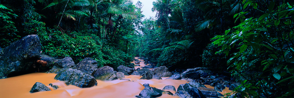 PUERTO RICO, LANDSCAPE El Yunque Rainforest/Caribbean National Forest; the only tropical rainforest in the U.S. Park System, La Mina River