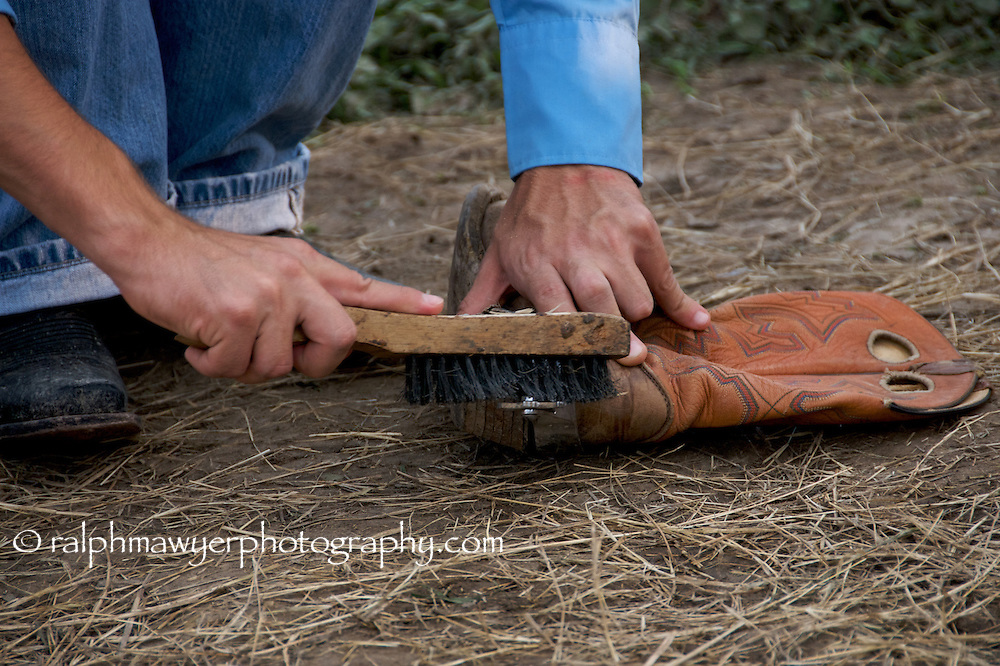 Rodeo cowboy preparing his spurs for bull riding.