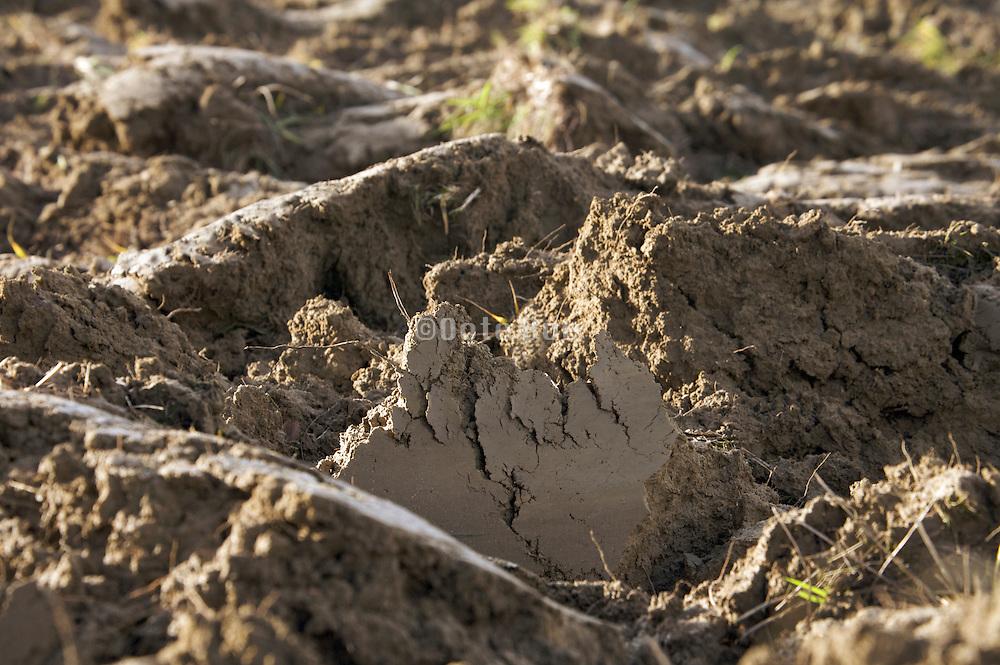 freshly plowed soil