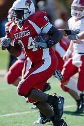 28 October 2006: Offensive lineman Jarek Thomas heads towards the Redbirds goal after intercepting a pass thrown by Tom Zetts. Thomas scores the first Redbird touchdown. Youngstown State turned off over 15,000 fans as the win blew their way, cooling off Illinois State 27-13. Nationally ranked teams Youngstown State Penguins and Illinois State Redbirds competed at Hancock Stadium on the campus of Illinois State University in Normal Illinois.<br />