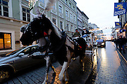 Horse carriage on Grodzka street at dusk in winter, Krakow, Poland