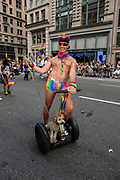 New York, NY - 25 June 2017. New York City Heritage of Pride March filled Fifth Avenue for hours with groups from the LGBT community and it's supporters. A man wearing rainbow shorts rides a Segway with a small dog.