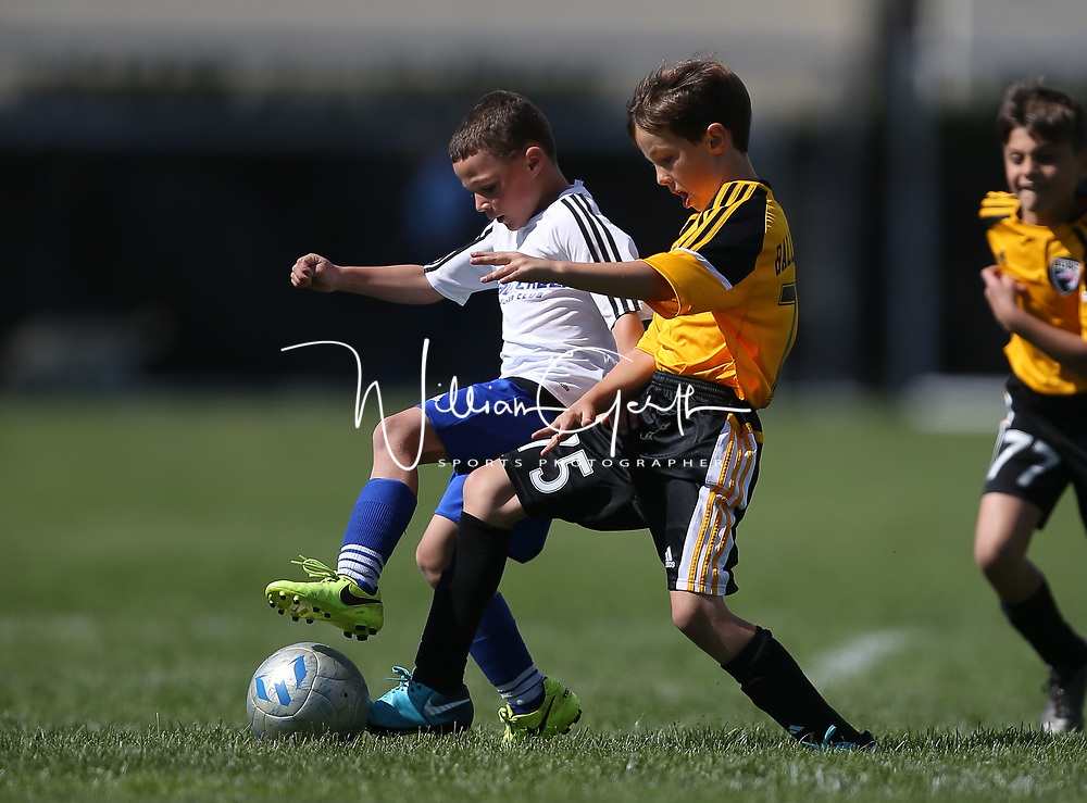 Soccer in the Pleasanton Youth Soccer at Pleasanton Youth Soccer Field, Pleasanton CA on 4/15/18. (William Gerth/www.williamgerth.com)