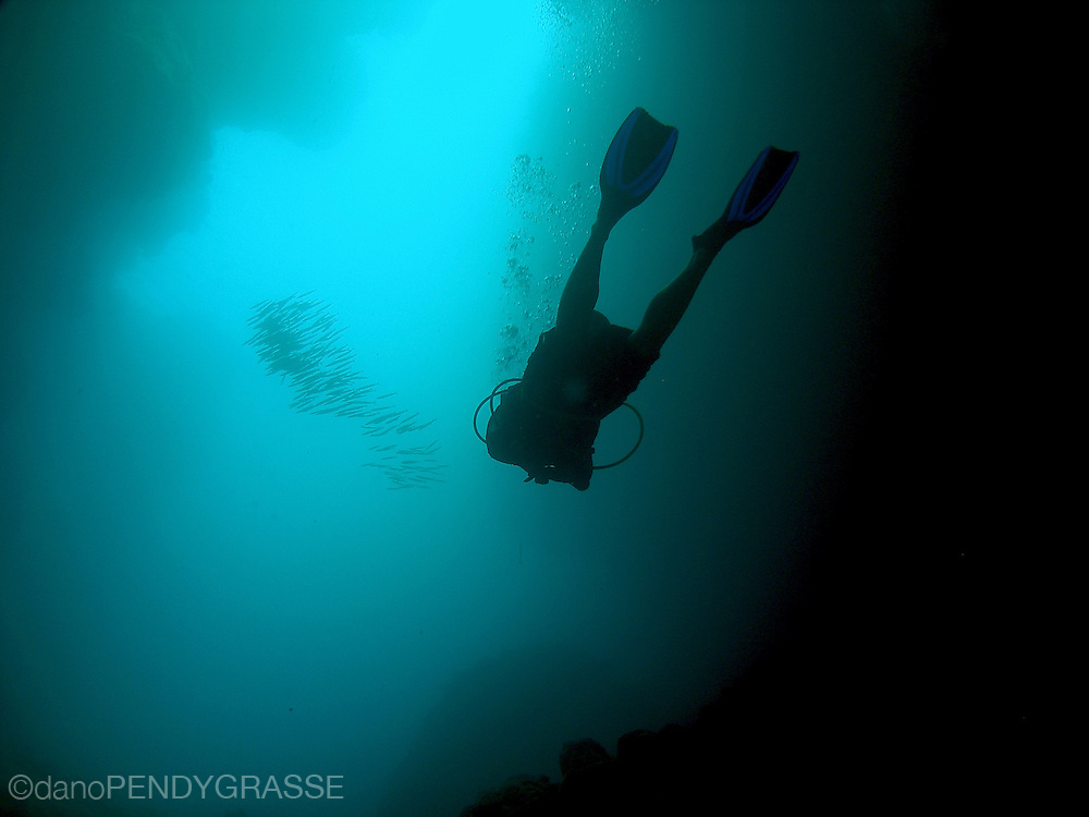 A girl dives through an eerie underwater cave called spooky channel in Roatan, Honduras. In the background is a school of sennet,(Sphyraena picudilla) a barracuda like fish.