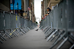 New York, NY: Mon, Aug 23, 2010 : --- A pigeon walks inside of a long line of barricades set up with great effort by police outside of New York Pennsylvania Station in preparation for some 100,000 stranded or heavily delayed passengers after a fire at a major switching tower crippled commuter rail service in the late afternoon. The crowds never materialized..