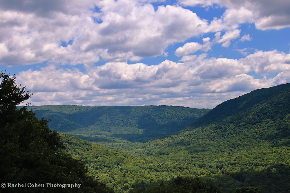&quot;Loving the Laurel Highlands&quot;<br />