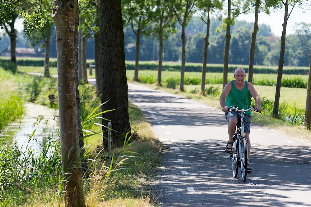 In Zeist rijdt een oudere man op de fiets in de hitte langs de weilanden.<br /> <br /> In Zeist a man cycles in the heat near the pastures.