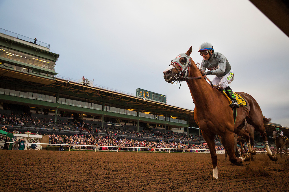 January 09, 2016: California Chrome and Victor Espinoza win the San Pasqual Stakes at Santa Anita Park, Arcadia CA. Evers/ESW/CSM