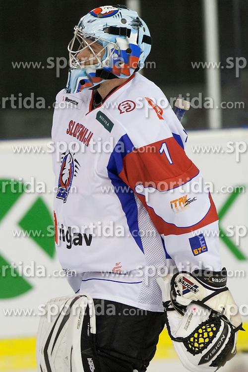 Andrej Hocevar of Switzerland during friendly ice-hockey match between Slovenia and Switzerland, on December 14, 2011 at Hala Tivoli, Ljubljana, Slovenia. (Photo By Matic Klansek Velej / Sportida)