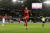 Swansea City v Middlesbrough 141219