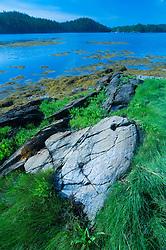Ram Island Scenic, Castine, Maine, US