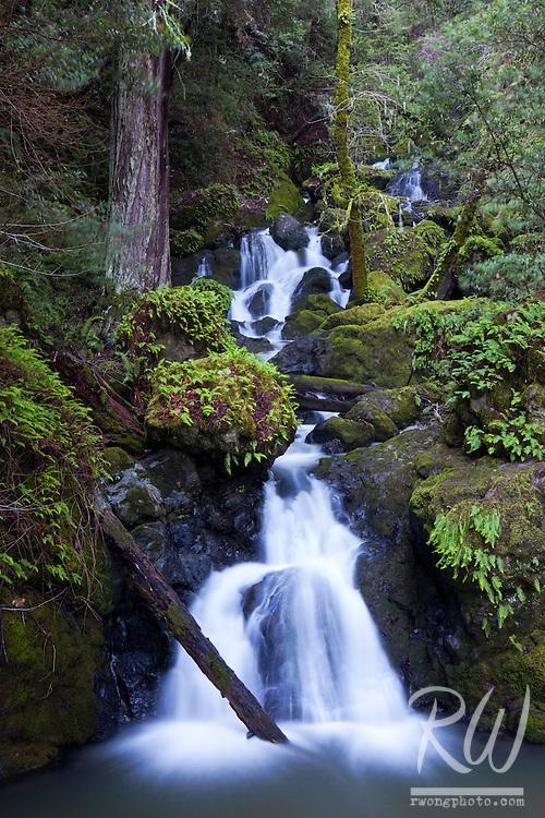 Cataract Falls, Marin Municipal Water District, California