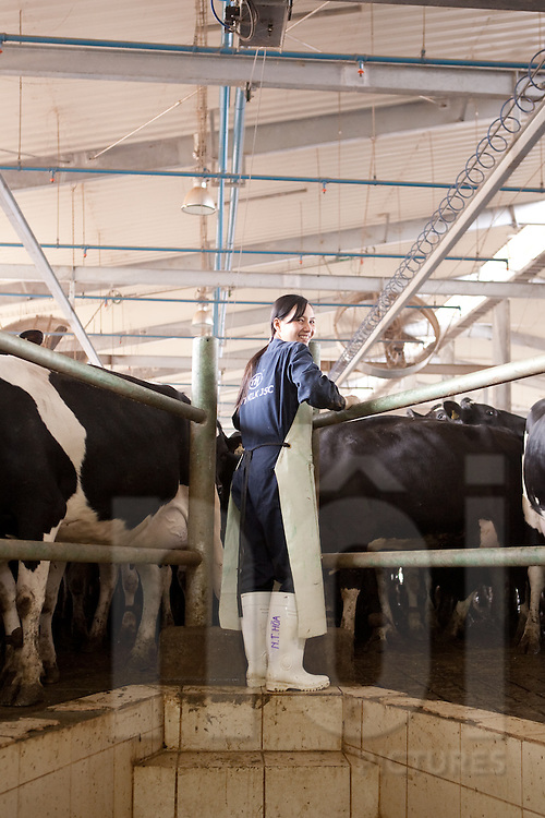 TH Milk si one of Asia's biggest dairy farm. Located in Nghe An province, in north-central Vietnam, TH Milk is directed by Mr Barak Wittert, who grew up on a kibbutz in Israël, and plans to transform the fast-growing fresh milk industry in Vietnam. The farm is being set up and operated by Afimilk, a dairy farm technology company owned by Kibbutz Afikim..The TH Milk farm now has 12,000 cows from New Zealand and hired 300 vietnamese workers since 2009. The directors intend to turn the farm over to the locals within 5 years.