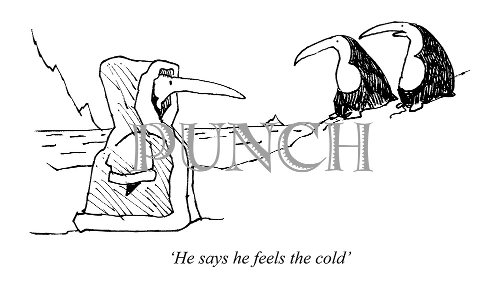'He says he feels the cold'