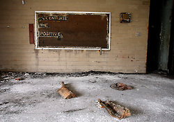 29 August 2007. Lower 9th Ward, New Orleans, Louisiana. <br /> Second anniversary of Hurricane Katrina. President Bush visited a high school less than a mile from the still demolished Alfred Lawless High School in the Lower 9th Ward. Bush posed for photo opportunities at a newly rebuilt high school, yet close by the ghostly remains of another high school show how so many have been left behind. The area remains mostly abandoned and overgrown. President Bush came to town and claimed he could be proud of what local and federal government have achieved in the city. Yet two years after the storm, it is quite clear that local and federal government are failing and have a great deal to do to live up their promises.<br /> Photo credit; Charlie Varley.