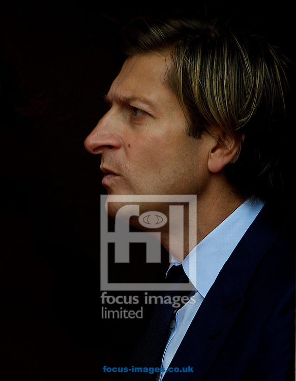 Crystal Palace chairman Steve Parish before the Barclays Premier League match at Selhurst Park, London<br /> Picture by Alan Stanford/Focus Images Ltd +44 7915 056117<br /> 18/10/2014