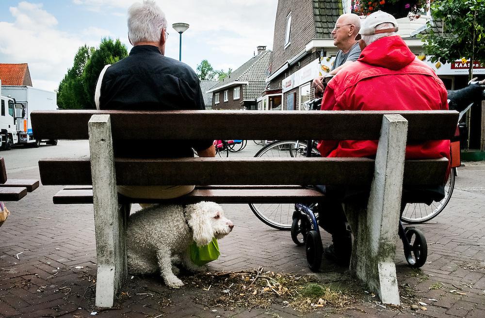 Netherlands, Driebergen, 25  juni 2014<br /> Weekmarkt op de Traaij, de hoofdstraat in Driebergen. Drie mannen bespreken de toestand in de wereld op een bankje. Een hond wacht af onder de bank.<br /> Foto: (c)Michiel Wijnbergh