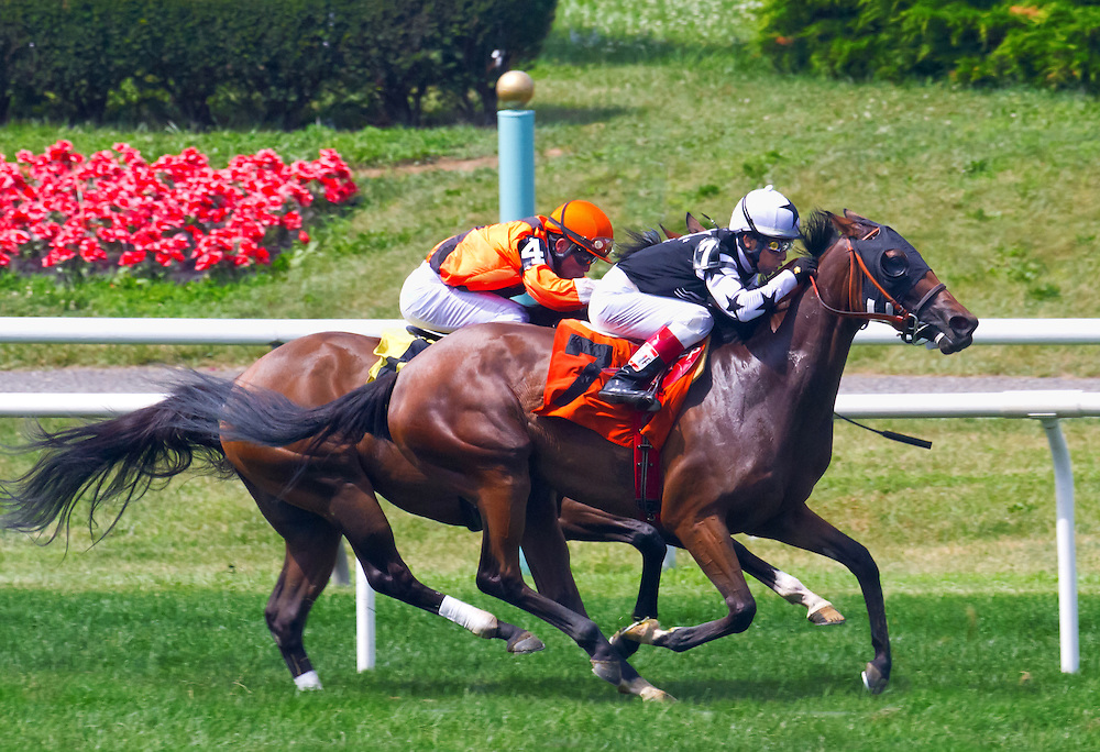 """""""Miracle on Broadway"""" (outside) breaks his maiden at Belmont Park with Edgar Prado aboard."""