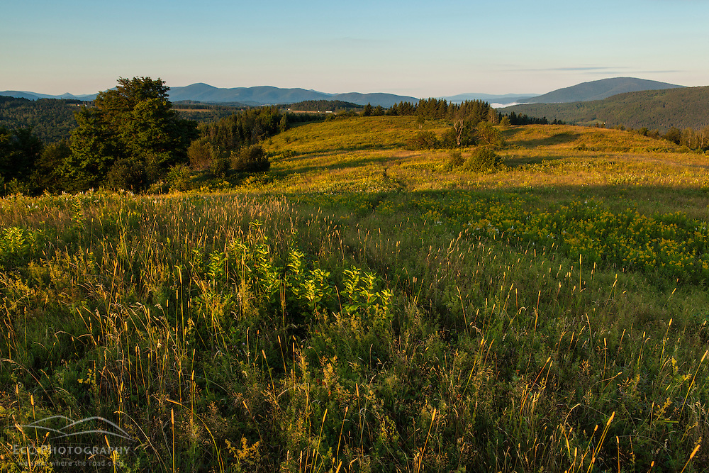 A game trail meanders through a hill top meadow in Stewartstown, New Hampshire.