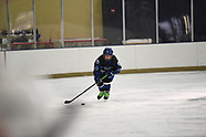FRI 1425 NOVI ICE CATS 07 V LEAFS 3