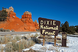 Red Canyon area of Dixie National Forest, Utah Scenic Highway 12, near Bryce Canyon National Park, Utah, United States of America