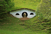 22/11/2009- New Zealand -<br /> Sheep in The Shire<br /> When Peter Jackson's production crew left Matamata, New Zealand, they left 17 hobbit holes on the private farm that was used as a stand-in for the Shire. Since then, the farm's sheep have moved in on this hobbit ghost town.<br /> (©Tara Hunt/Exclusivepix)