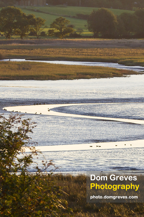 Middlebere channel from Arne in late afternoon. Purbeck, Dorset, UK.