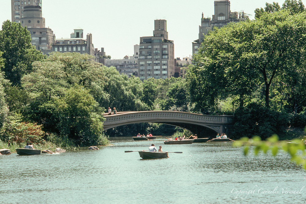 Rowing on the Lake in Central Park