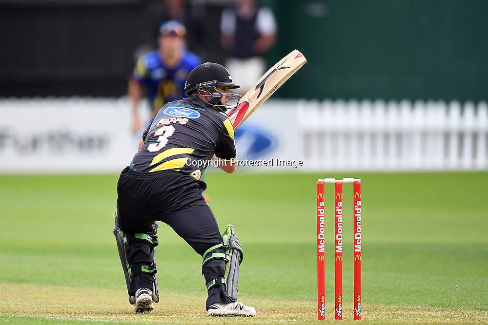 Wellington batsman Michael Papps in action during the McDonald's Super Smash, Wellington Firebirds vs Otago Volts, Basin Reserve, Wellington, Tuesday 03rd January 2017. Copyright Photo: Raghavan Venugopal / www.photosport.nz