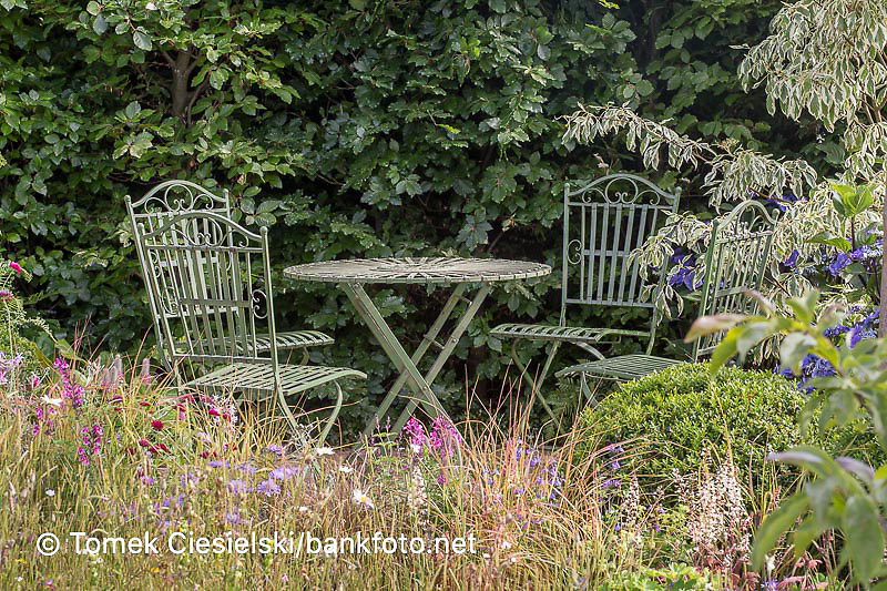 Metal antique furniture against the fagus hedge