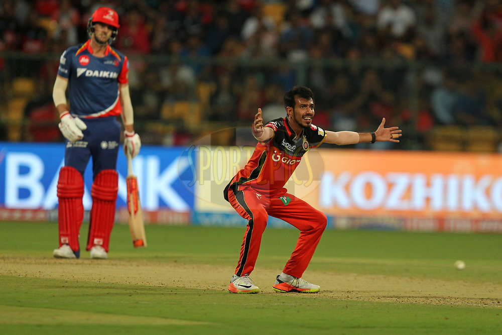 Yuzvendra Chahal of Royal Challengers Bangalore unsuccessfully appeals during match 5 of the Vivo 2017 Indian Premier League between the Royal Challengers Bangalore and the Delhi Daredevils held at the M.Chinnaswamy Stadium in Bangalore, India on the 8th April 2017Photo by Prashant Bhoot - IPL - Sportzpics