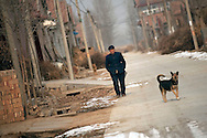 A man and a dog make their way through the town of Huji in the province of Shandong, China, Friday, Jan. 28, 2011. Despite record cotton prices last year, some farmers are storing their harvest of cotton and are holding out for even higher prices, hoping to help overcome higher costs of fertilizer and labor, which have both risen 20% in the past year..CREDIT:Keith Bedford for The Wall Street Journal.Slug: COTTON