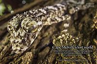 Australian Geographic magazine page layout