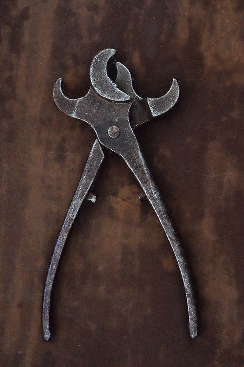 Vintage metal tool with twin heads used for applying tethering rings to noses of bulls or pigs lying open on metal sheet